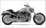Harley V-Rod